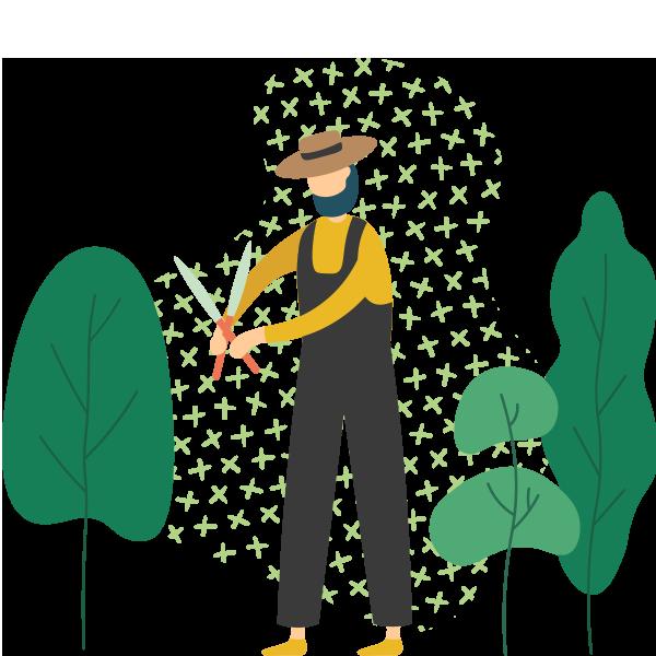 https://godontreecare.com/wp-content/uploads/2019/11/illustration_03.png